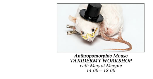 14:00 – 18:00 Anthropomorphic Mouse Taxidermy Workshop with Margot Magpie