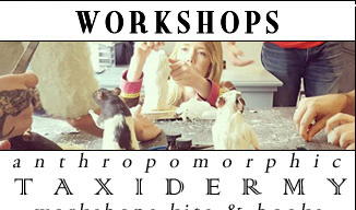 Anthropomorphic Taxidermy Classes in London