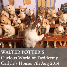 Walter Potter Event taxidermy event national trust london carlyle's house